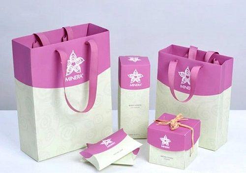 thiết kế túi giấy theo bộ nhận diện thương hiệu